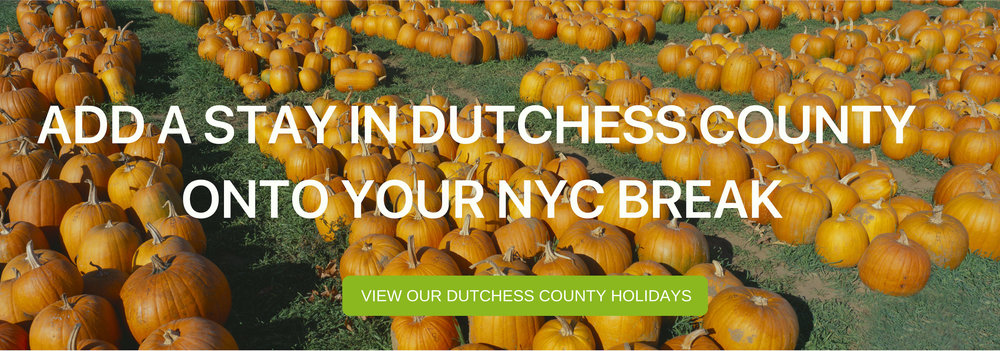 DUTCHESS COUNTY PUMPKINS.jpg