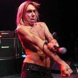 Church of Iggy Pop