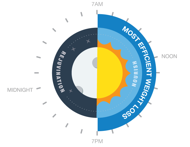 RR-clock-vector1.png