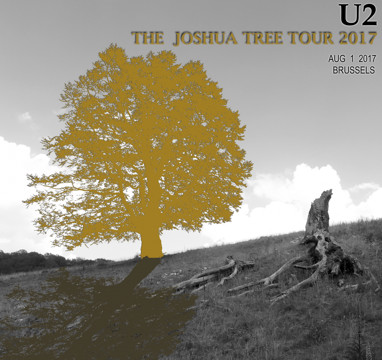U2  -  The Joshua Tree Tour 2017   -   Brussels August 1  2017
