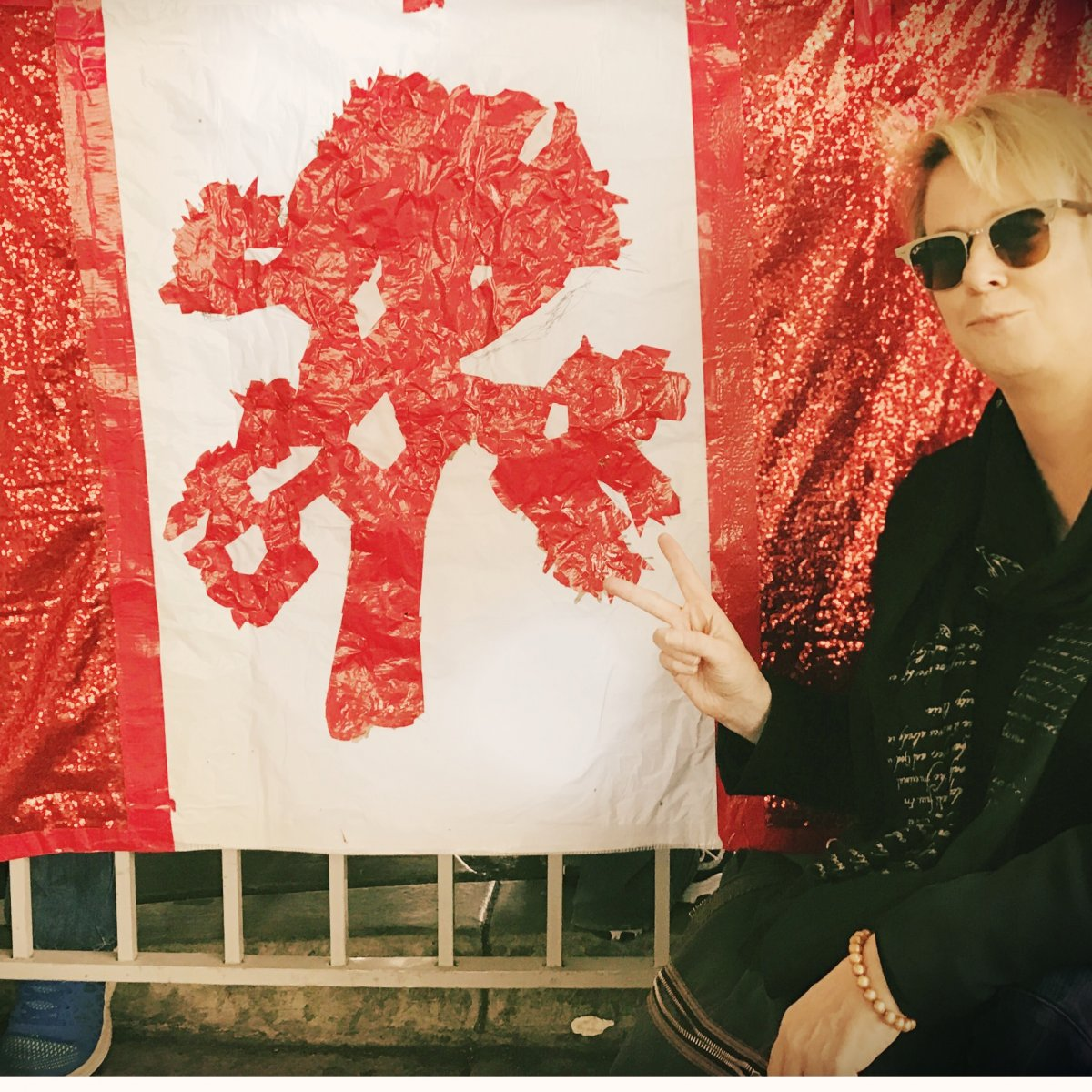 Welcome to Canada JT flag