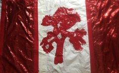 My JT Canada Flag Signed by Bono