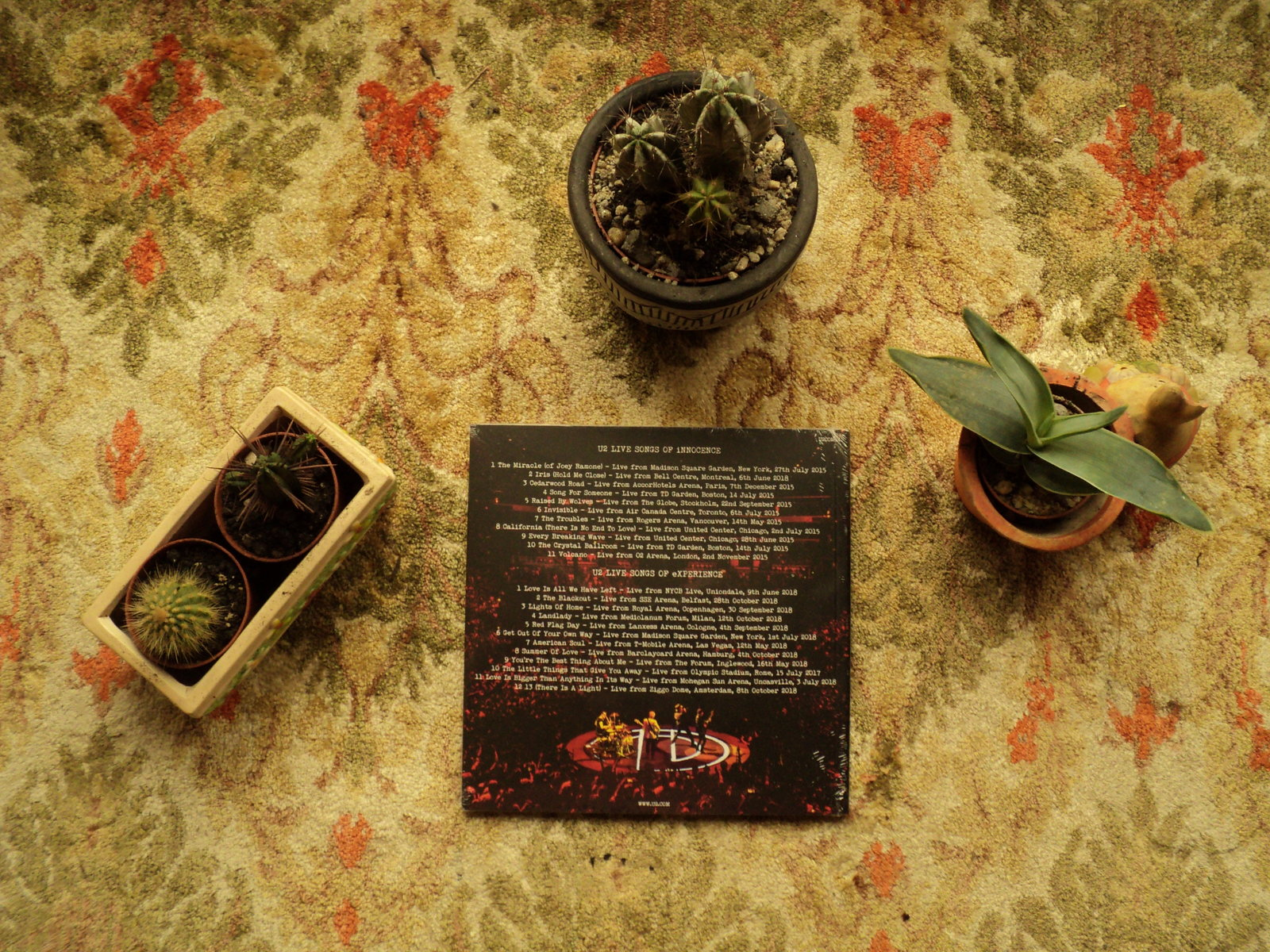 Back Side Album with My Cacti