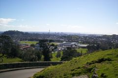 one tree hill pic of auckland city
