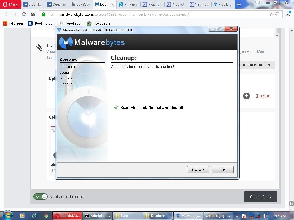 bootkit Malmo MBR is false positive or not? - Malwarebytes 3