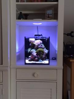 10 gallon book shelf nano