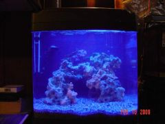 Bought a use Biocube 14