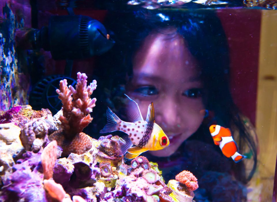 My Daughter Katelynn Checking Out the Reef!