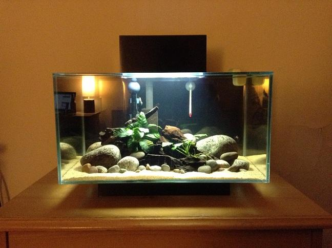 Fluval Spec V Simple Marine Setup Aquarium Journals