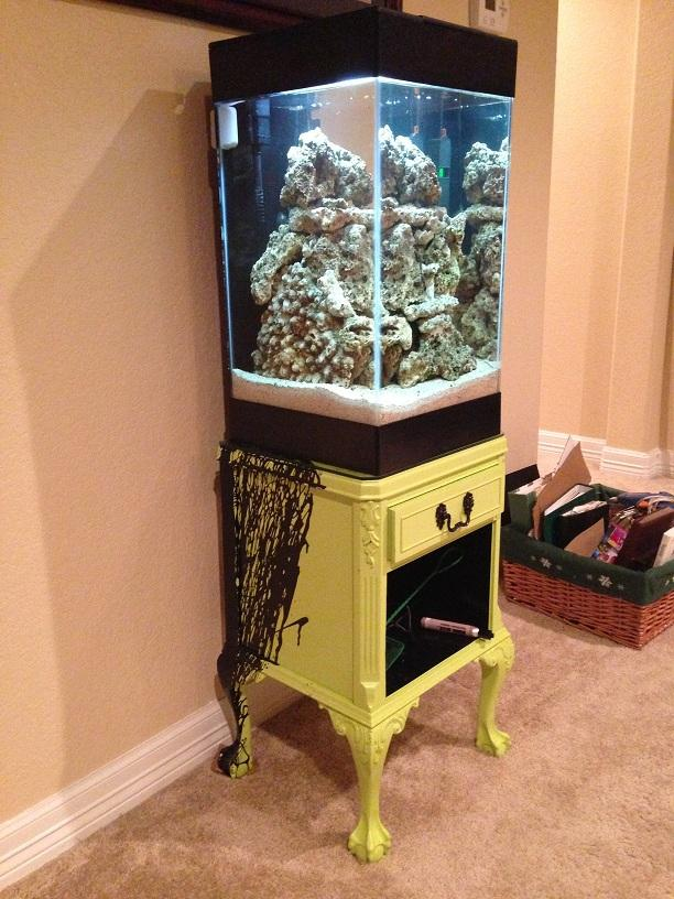 Aqueon 15 Gallon Column Reef 1st Attempt Worth Every