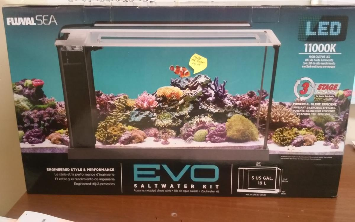 Fluval sea evo 5 pico reefs nano reef community post 53952 0 96530800 1449540824thumbg aloadofball Image collections