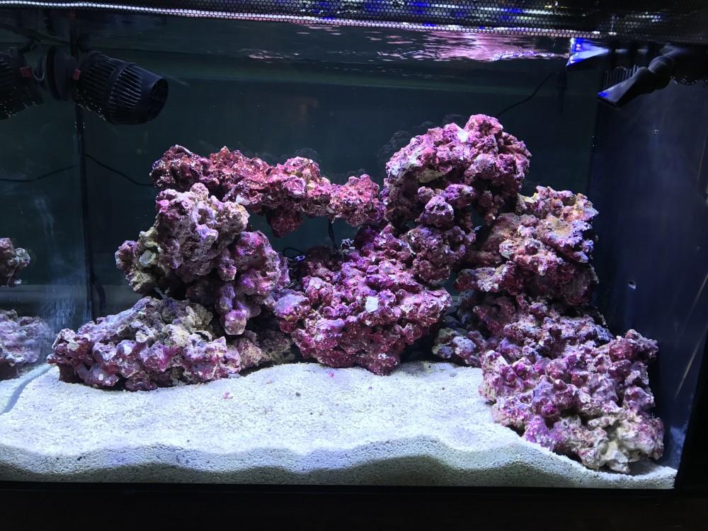 First Saltwater Tank Aquascape Aquascaping Forum Nano Reef Com Community