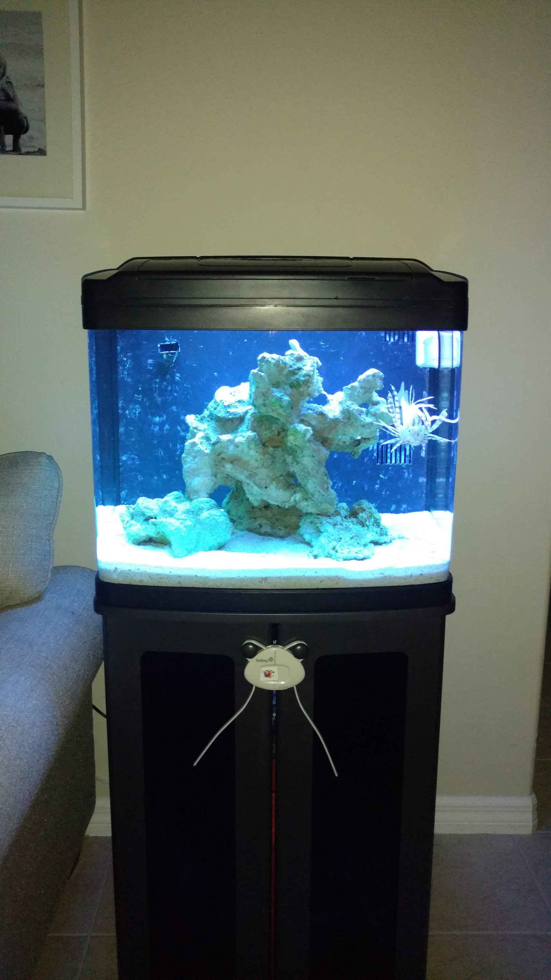 Coralife Biocube Size 29 Amp Size 32 Replacement Led Canopy