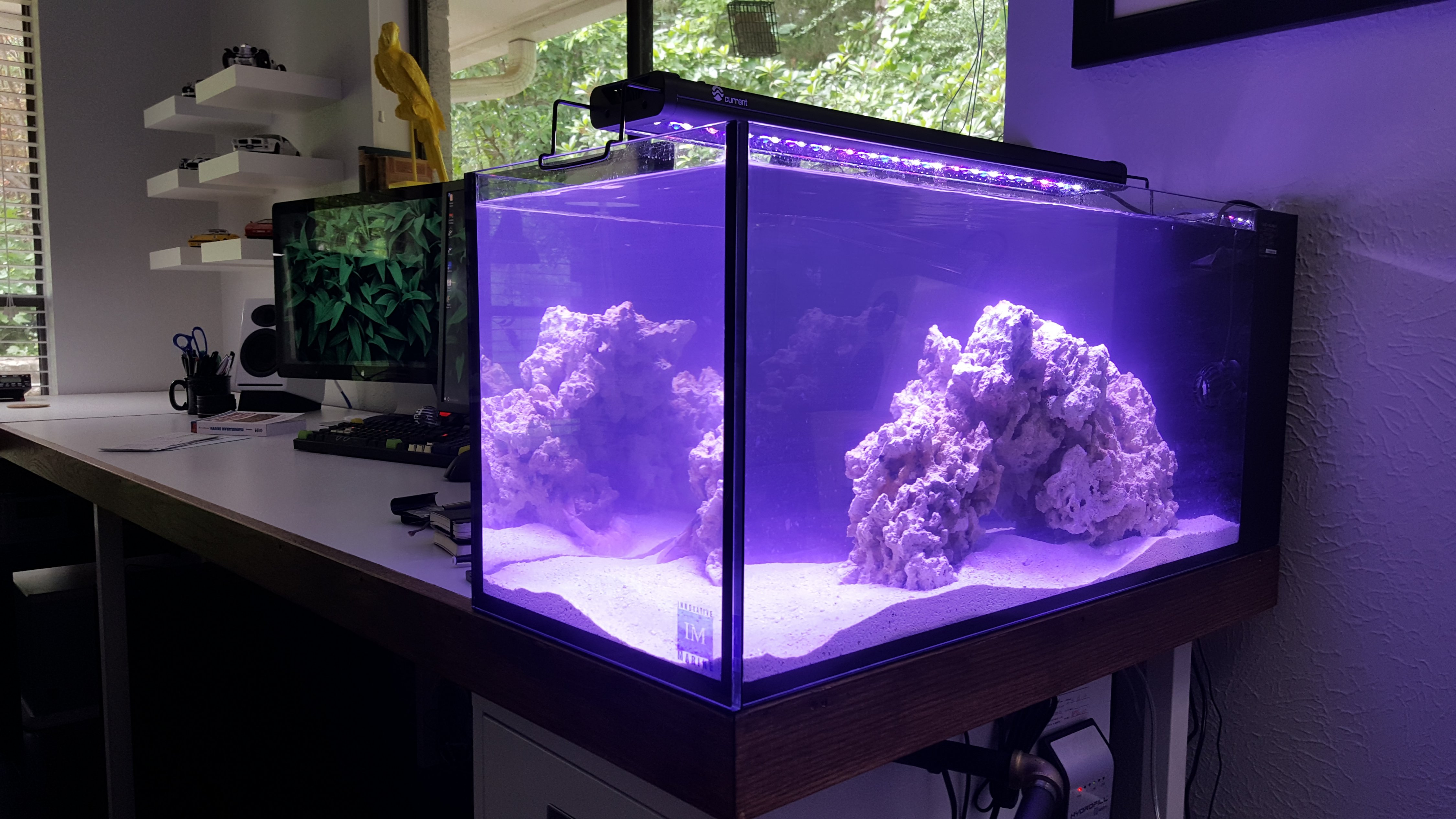skoch s im fusion peninsula 20 aquarium journals nano reef com