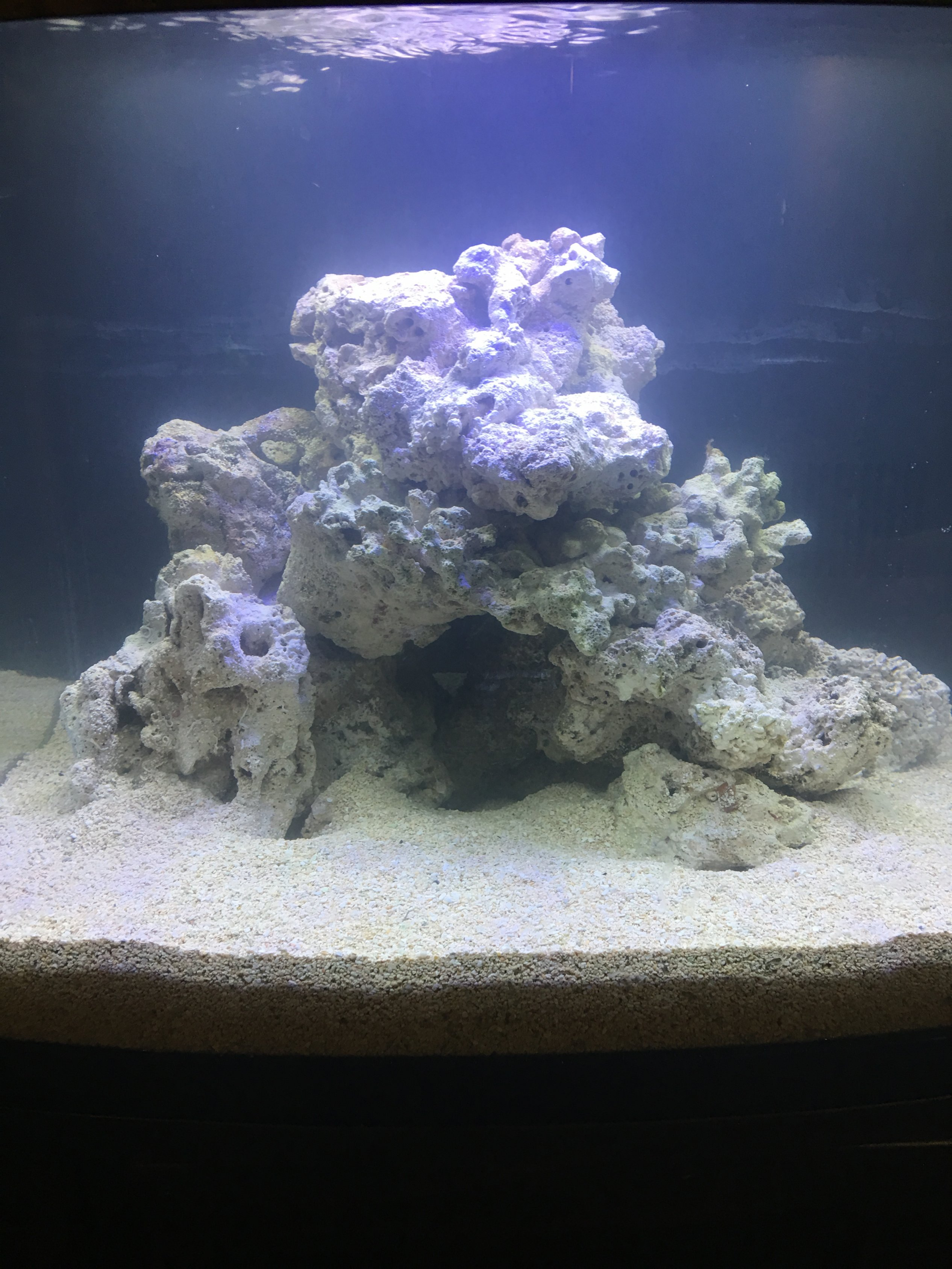 IMG_1040.JPG & Mounting a kessil a160 to 29 gallon biocube hood - Lighting Forum ...