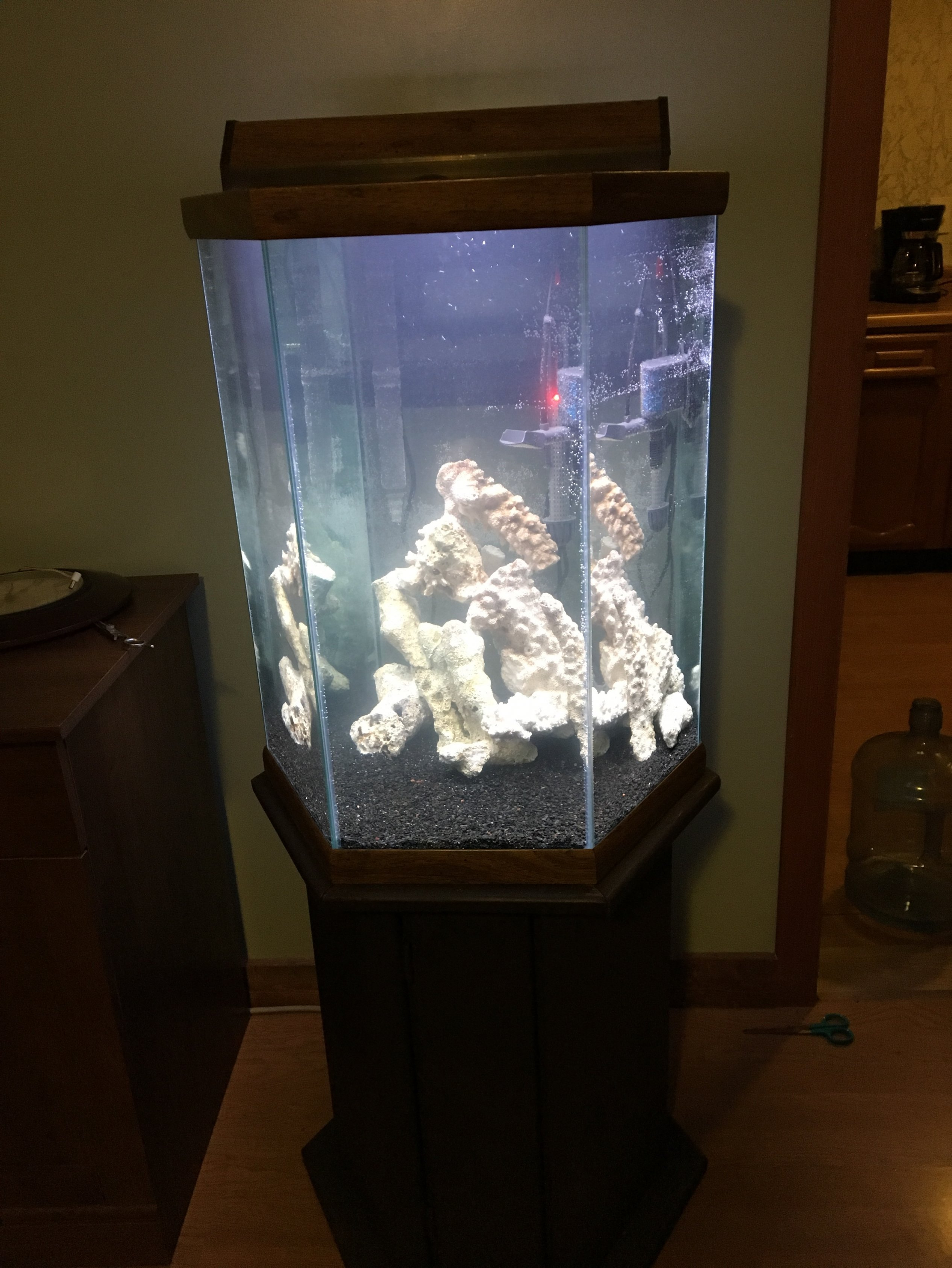Do I need equipment in the aquarium-glass 22
