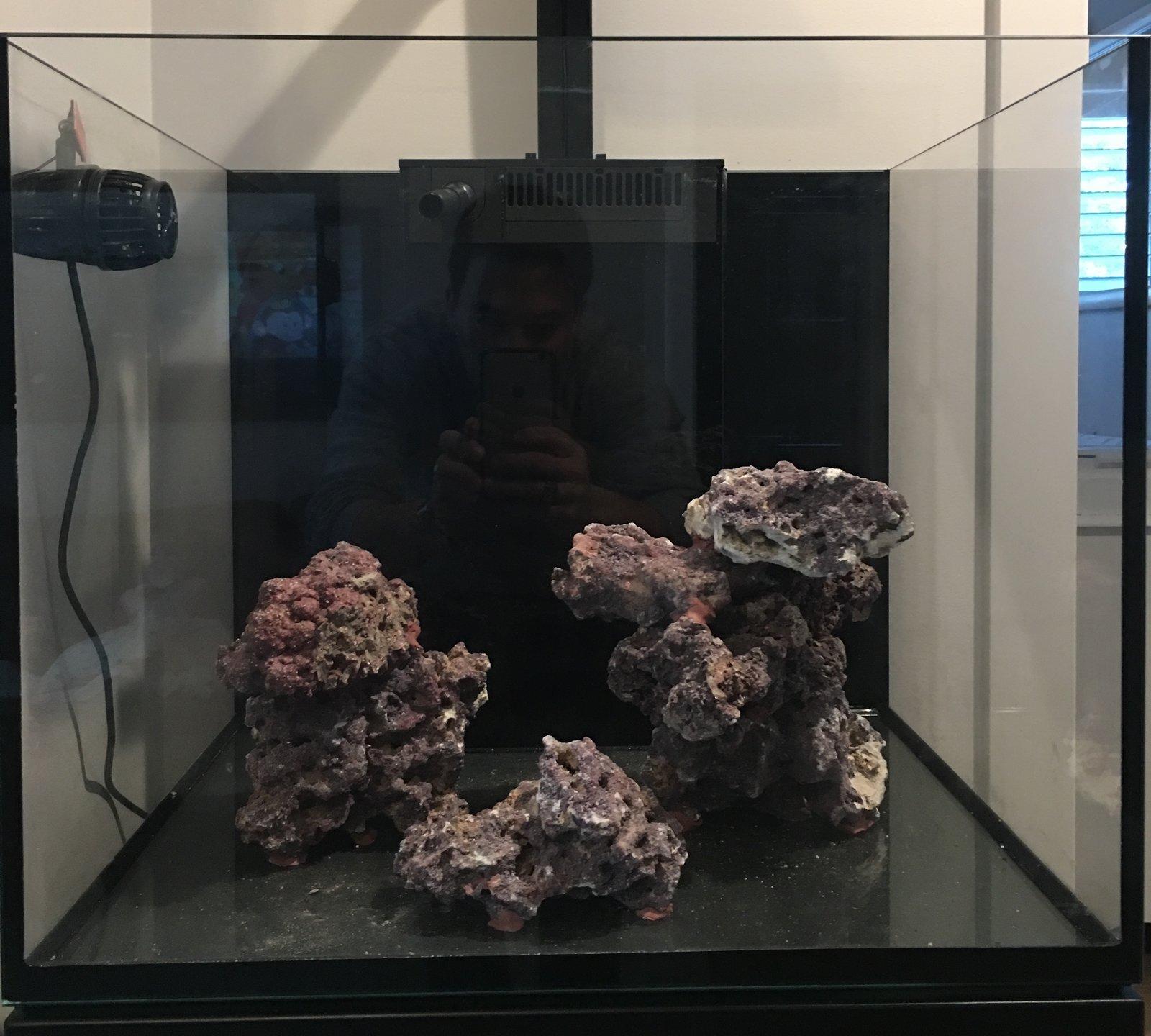 brian s red sea reefer 170 aquarium journals nano reef com community