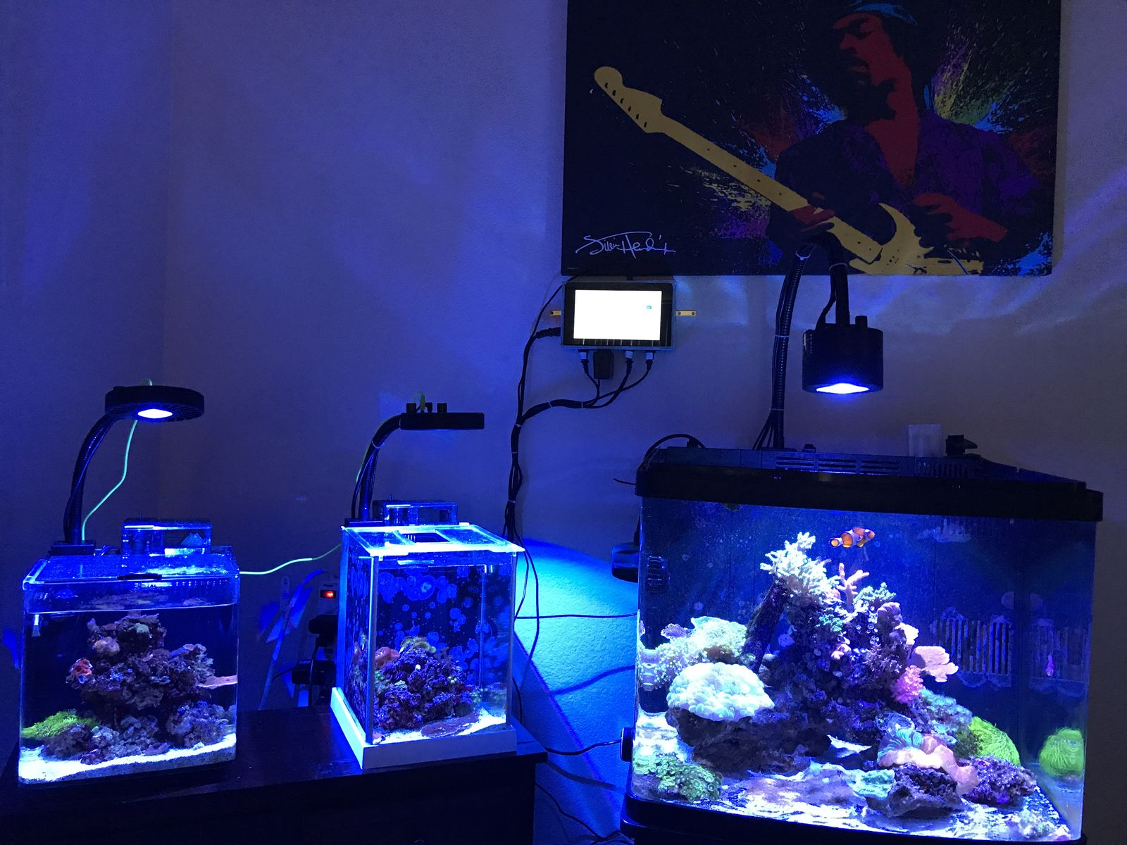 Reef tanks controlled by reef-pi 2nd build