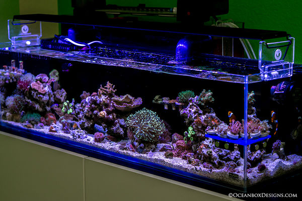 12G Long OceanBox