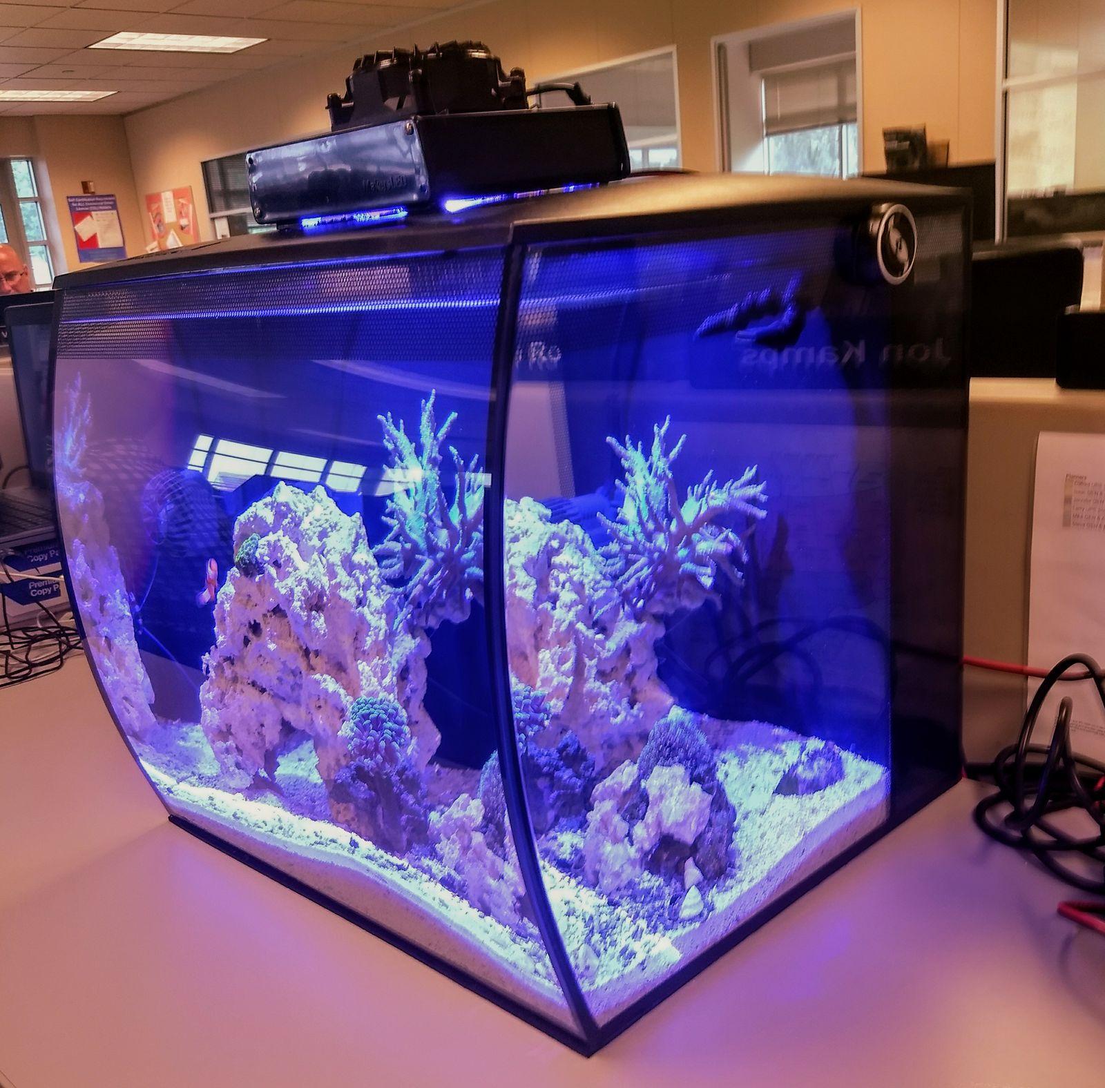 Fluval Flex 15 reef conversion - DIY Projects - Nano-Reef com Community
