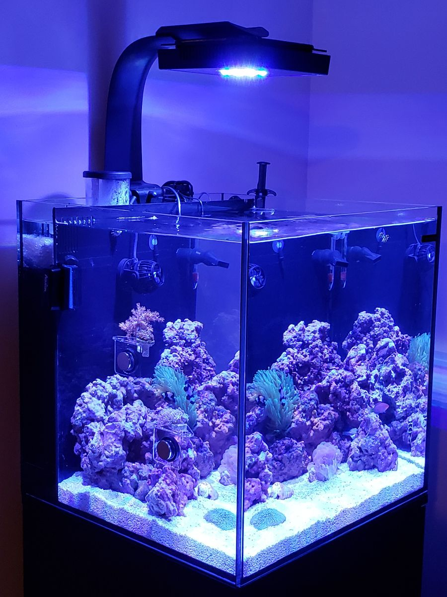 New 24g Nano Set Up