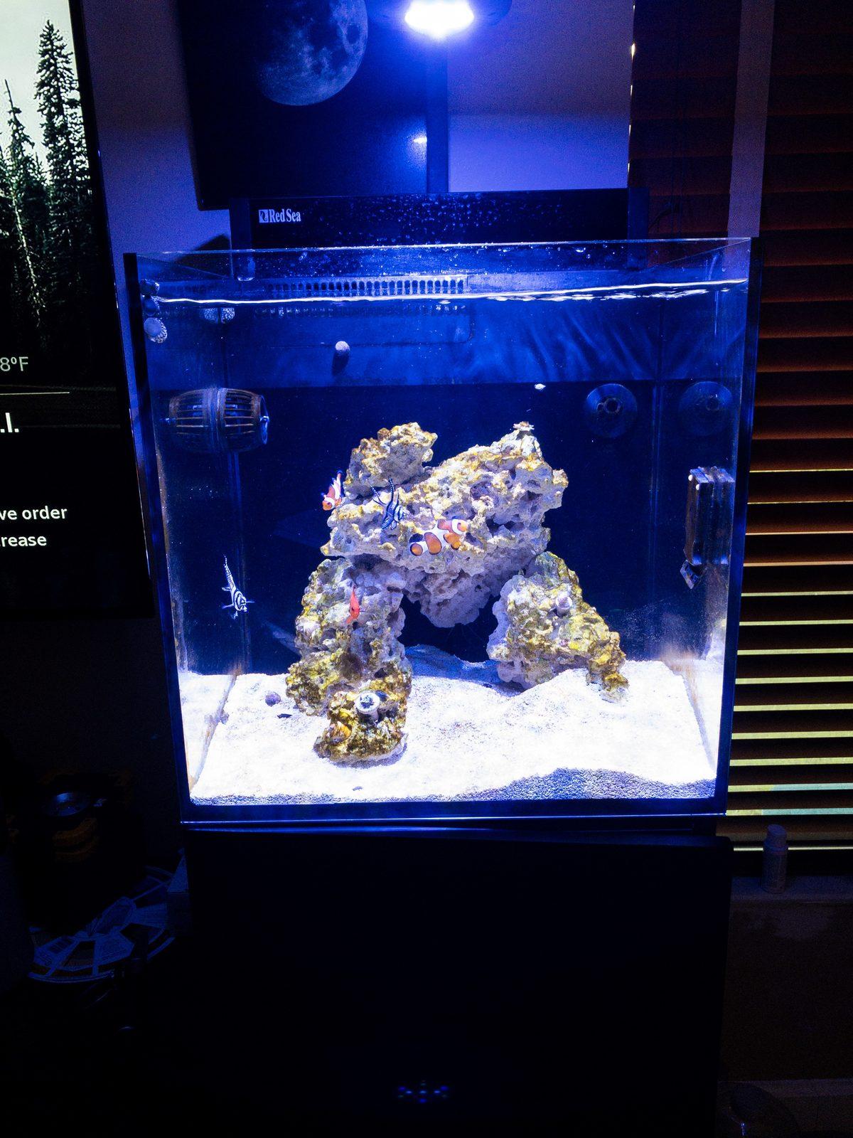 Red Sea Max Nano Aquascape Aquascaping Forum Nano Reef Com Community
