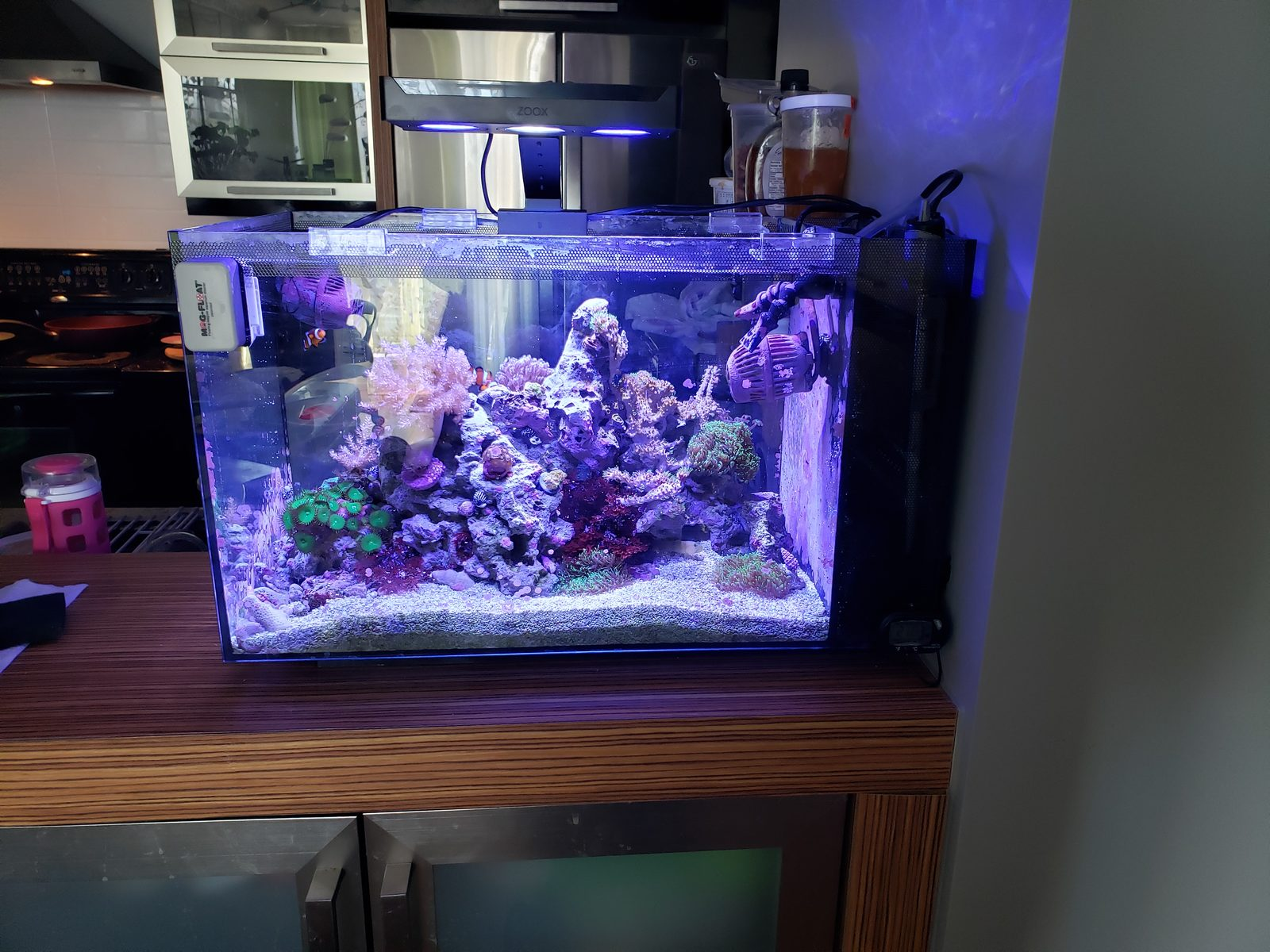 opgehaald officiële foto's discountwinkel Best light for Fluval 13.5, help me to choise - All-In-One ...