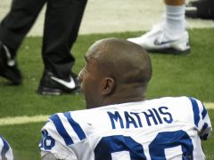 #98 Robert Mathis