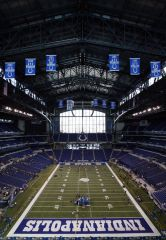 My stadium   colts baby