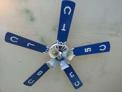 Hand painted ceiling Fan