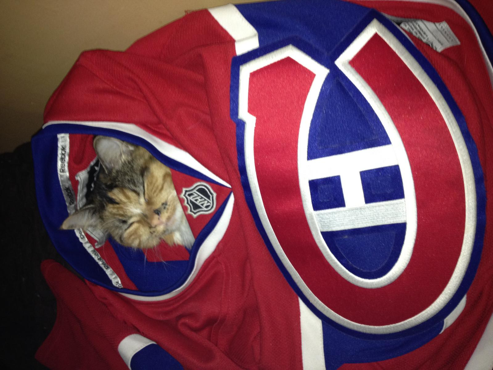 hockey kitty