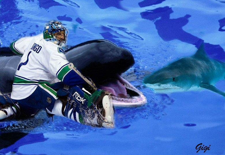 Canucks/Sharks