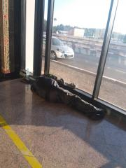 believe or not this is a guy sleeping on the floor of Casablanca airport. this airport is a nightmare