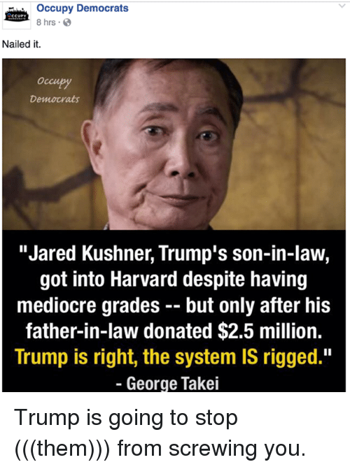 occupy-democrats-ccupy-8-hrs-nailed-it-democrats-jared-kushner-7009144.png