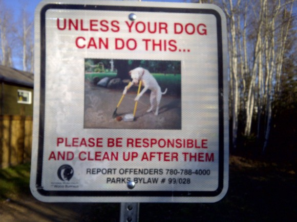 Funny-sign-dog-cleaning-up-poop.jpg