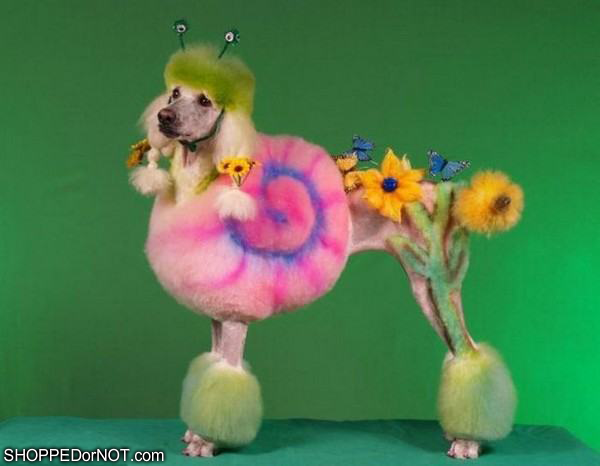 flower-power-puppy-shopped-or-not.png