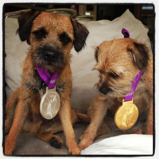dogs-wearing-his-olympic-medals.jpg