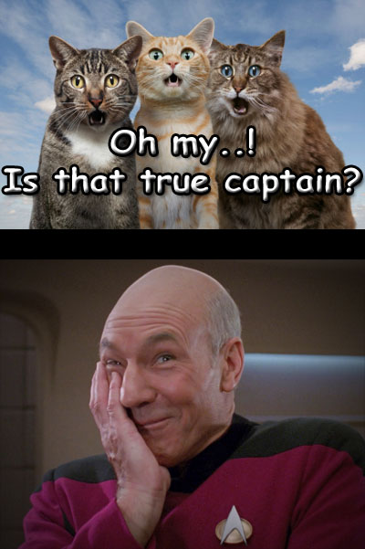 Is that true captain.jpg