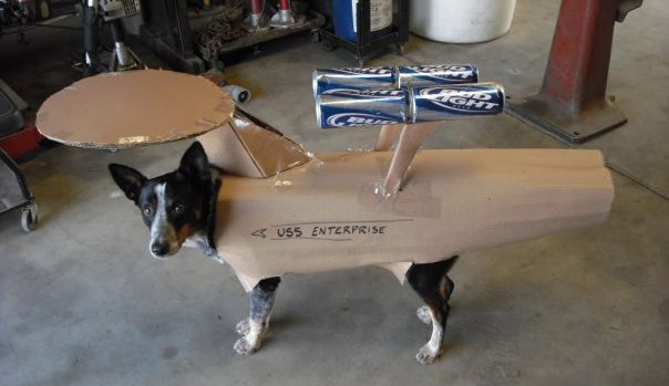 Dogship Enterprise.jpg