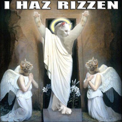 cat-jesus-resurrection.jpg
