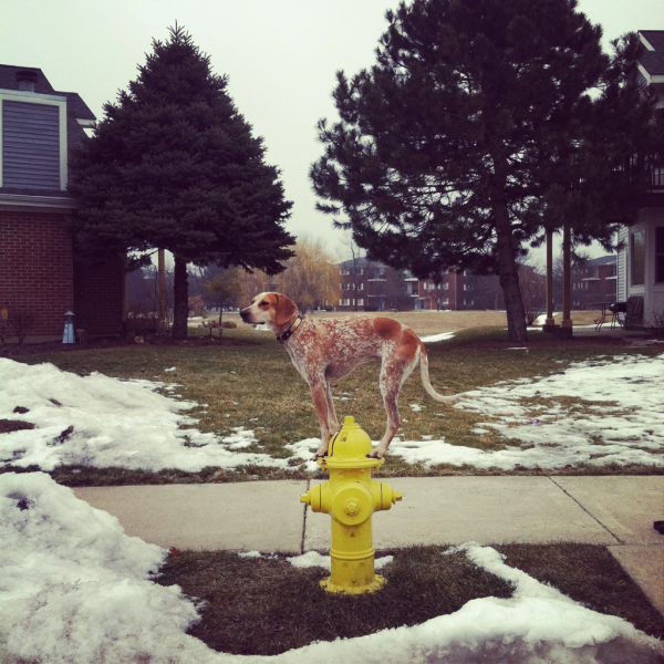 Maddie on Fire Hydrant.png