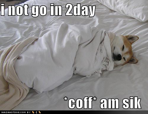 funny-dog-pictures-sick-in-bed-cough.jpg