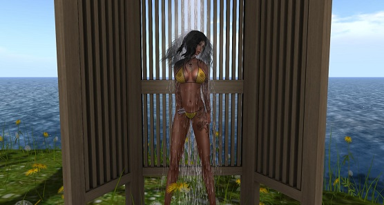 Snapshot-pandora-shower021115_001.jpg