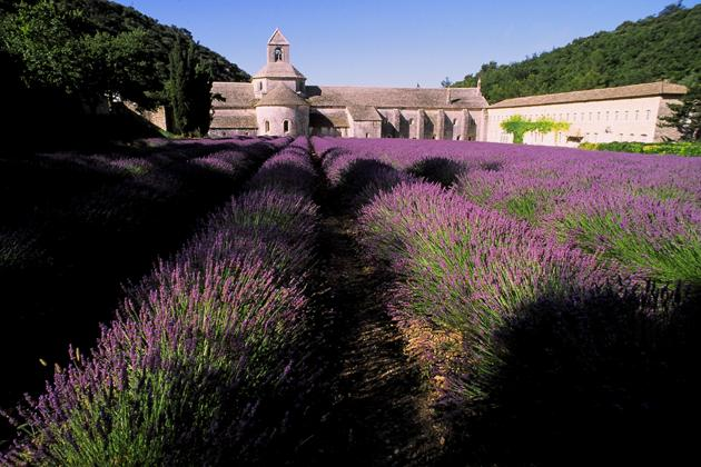 1044-abbaye-de-senanque-luberon-vaucluse-provence-france-cinema-movie-tournage.jpg