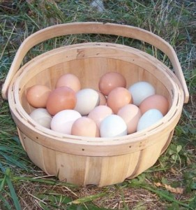 basket-of-eggs.jpg