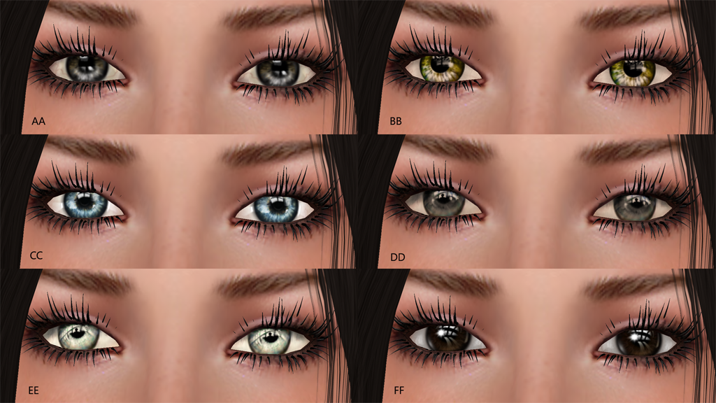LL eyes illustration.png
