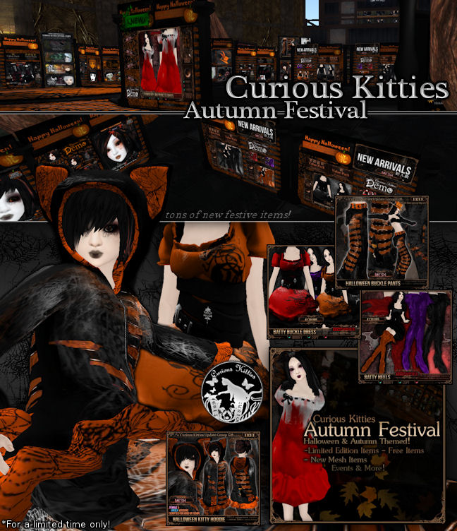 Curious Kitties Autumn Festival