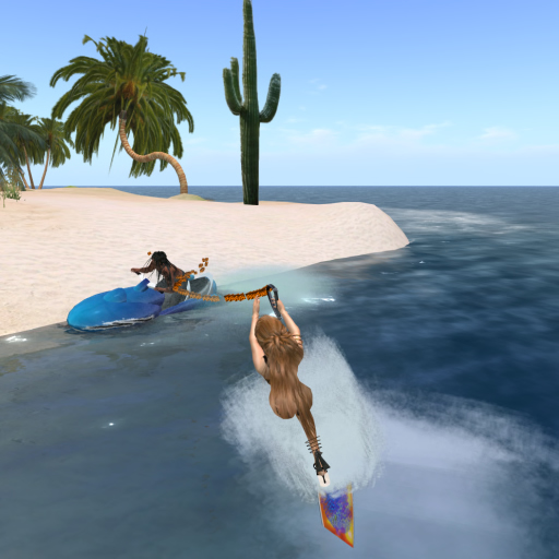 Water Skiing with the Creator, M Rossinni.jpg