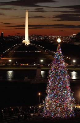 2010-Capitol-Christmas-tree.jpg