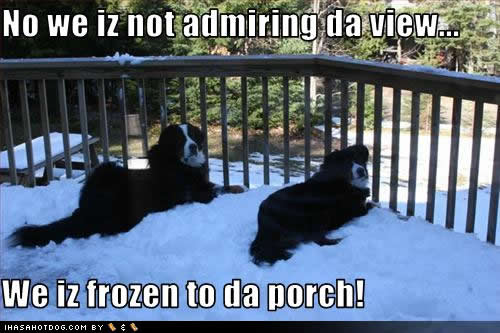 frozen-porch.jpg
